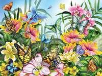 Kolorowe kwiatki w ogrodzie