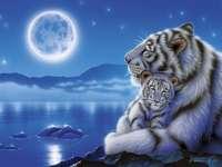 Tygrys z młodym