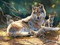 Млади вълци