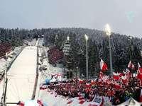 Copa mundial de salto - Copa del mundo de saltos de esquí: se celebra anualmente, entre noviembre y marzo, una serie de com