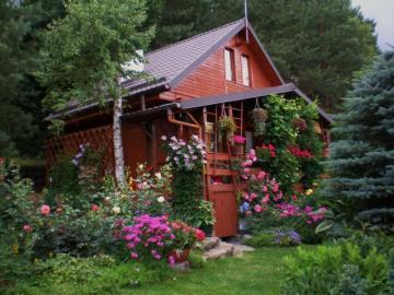 mały domek w lesie latem - mały domek w lesie latem