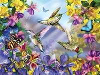 Пеперуди и колибри сред цветята