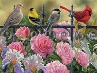 Fleurs, oiseaux et