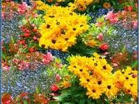 Τα πιο όμορφα λουλούδια του κόσμου - Τα πιο όμορφα λουλούδια του κόσμου