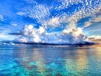 Малка морска екзотика