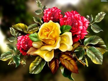 Róże, róże i róże - Roses, roses et roses