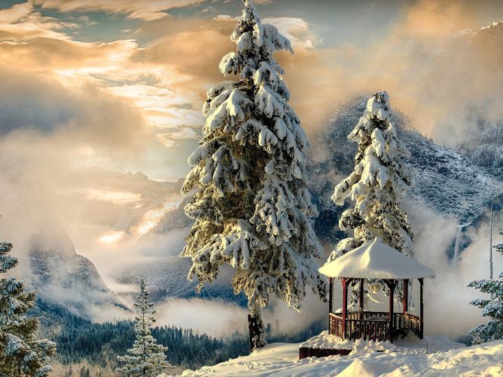 Беседка - зима - Планини, зима, дървета, зима, сняг (9×10)