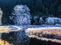 Река през зимата