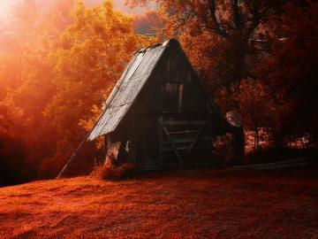 Chatynka - automne, arbres, cabane, paysage