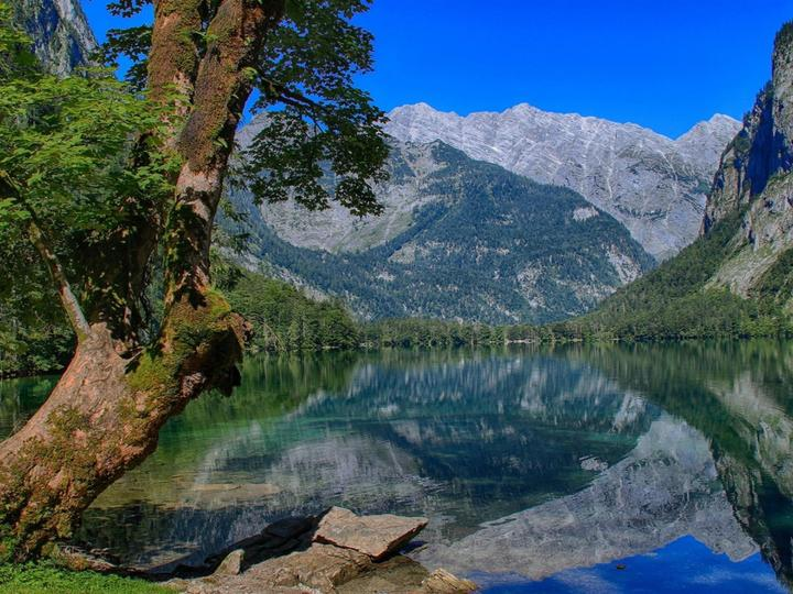 Езеро и планини - Езеро, дърво, планини, вода (9×10)