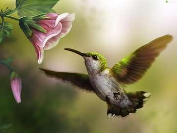 koliberek - koliber to piękny kwiat