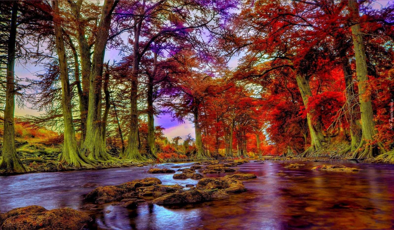 Падане на вода - вода, дървета, есенна река (11×7)