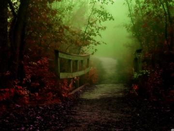 Chemin et pont - Automne, brouillard, chemin, pont