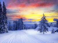 Зимен пейзаж - пъстър пъзел