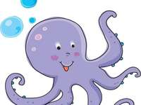 Octopus swimming in the sea - Octopus swimming in the sea