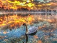 puesta de sol - rompecabezas de colores