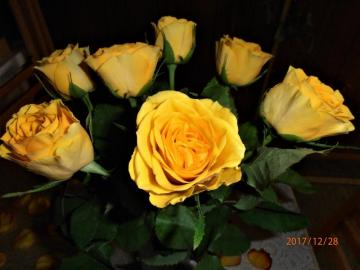yellow roses - floral gift