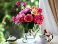 Färgglada rosblommor