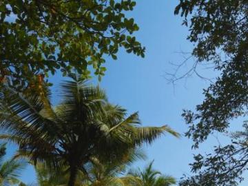 Feuchtgebiete in Sri Lanka - Feuchtgebiete im Südosten von Sri Lanka, in der Nähe des Yala-Nationalparks
