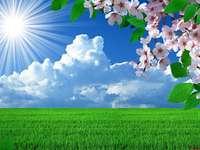 Natur i solskenet pussel