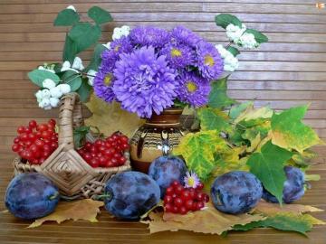 kompozytowe kolorowe kwiaty - śliwki, porzeczki i niebieskie astry. Kolorowe kwiaty.