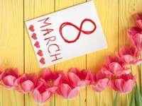 festa delle donne - i tulipani rosa stanno aspettando le donne