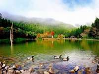 landscape - colorful jigsaw puzzle