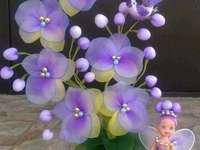flores - la naturaleza misma