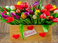 Women's Day,Colorful flowers