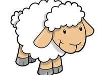 pecorella - ricomporre la pecorella