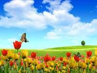 Puzzle di fiori primaverili - Puzzle di primavera per bambini - prato in fiori.
