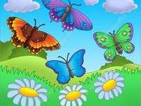 fluturând fluturi pe o pajiște
