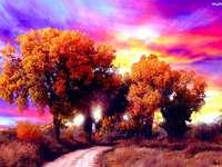 Цветни дървета