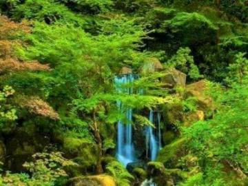 cascada - Hermosa cascada en una tierra de cuento de hadas