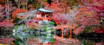The most beautiful place on ea - The most beautiful place on earth - Japan