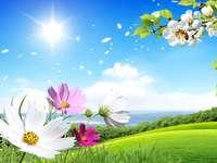 flori - natura însăși