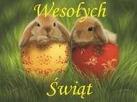 roztomilé králíčky