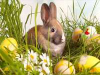 Easter puzzle - Easter bunny.