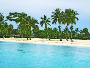 paisaje costero - paisaje, playa, trópico, palmeras