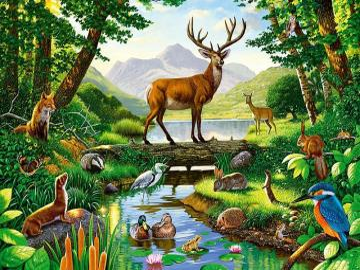 Auf dem Fluss - Tiere, Wasserloch, Wald, Fluss