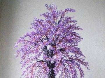 fiori - la natura stessa - albero viola in una pentola