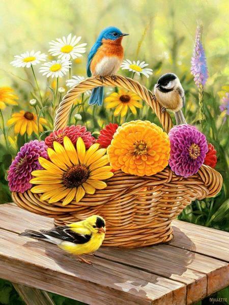 păsări colorate în flori