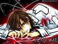 Kaname Kuran - Zdjęcie Anime Boy