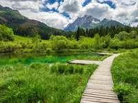 Lac en Slovénie. - Lac de montagne en Slovénie.
