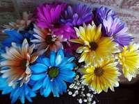 Color de las flores