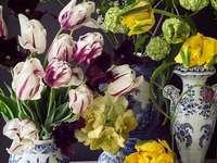 flowers - Colorful, beautiful little flowers.