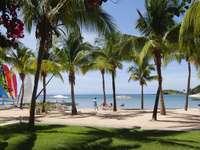 Antigua. Des Caraïbes.