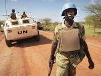 Wojna nigeryjska - wojna, która przeraża Saul