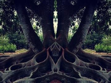 Beauté incroyable  - La nature, bien qu'elle détruise, mais donne aussi de soi - la beauté et l'enchantement