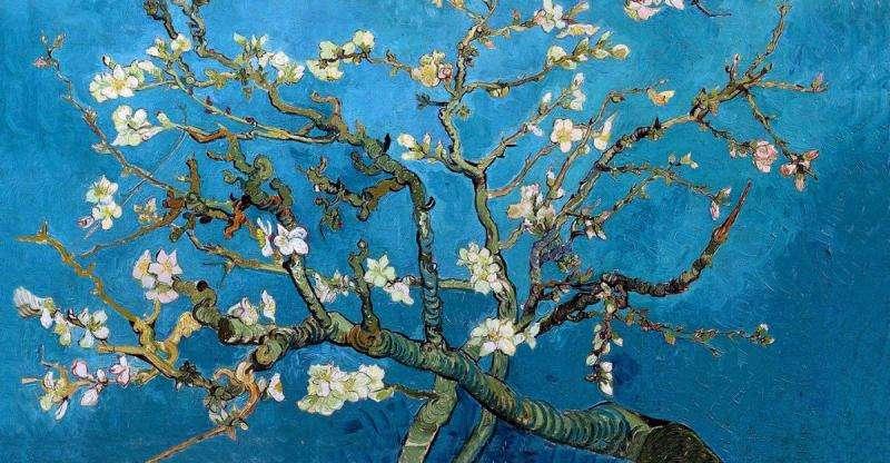 amendoeira - ramos de amêndoa em flor. Imagine quebra-cabeças (6×6)